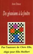 Des-geraniums-a-la-fenetre